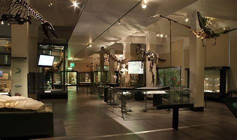 themed events auckland origins gallery venue hire auckland war memorial museum