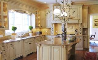 ideas for kitchen themes amazing kitchen d 233 cor ideas with fascinating eyesight
