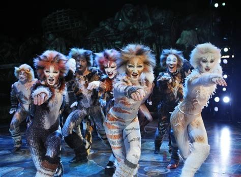 cats musical images cats the musical review decades on broadway and still the