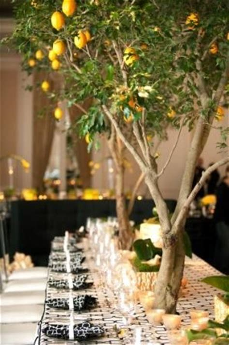 Trees, Lemon and Centerpieces on Pinterest