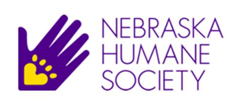 nebraska humane society dogs celebrating 60 years in omaha baxter auto