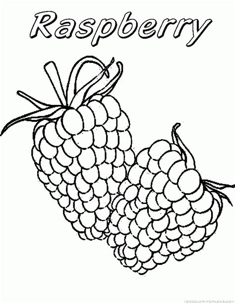 Raspberry Coloring Page free coloring pages of raspberry