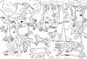 murales da colorare foresta nm 7884 0