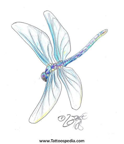 dragonfly tattoo studio kuala lumpur dragon tattoos tattoospedia