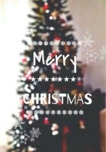 happy christmas followers