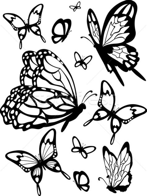 butterfly stencil vector illustration 169 lenm 4310606