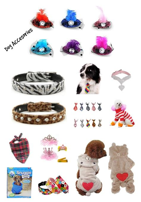 dogs accessories shopping 10 best accessories talks carolina