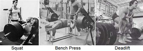 squat bench deadlift overhead press 7 rookie mistakes that could slow your gains gym talk