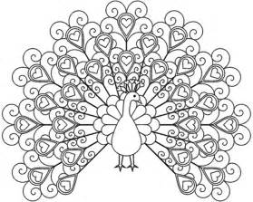 peacock coloring pages peacock coloring pages