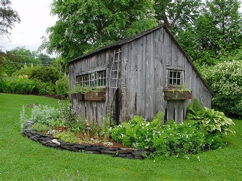 rustic shed garden sheds pinterest gardens raised