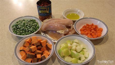 top grain free food grain free food recipe top tips