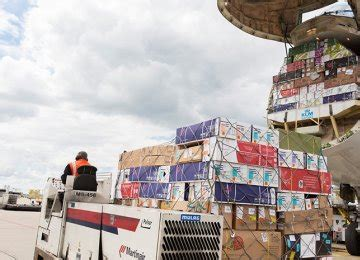 iata predicts stronger global air cargo traffic financial tribune