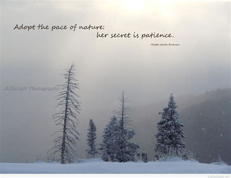 winter and quotes quote winter nature