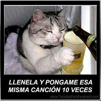 imagenes wasap comicas postales de cumplea 241 os archivos 123 felicecumpleanos com mx