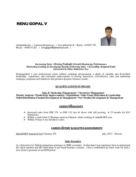 stron biz sle of resume for experienced person