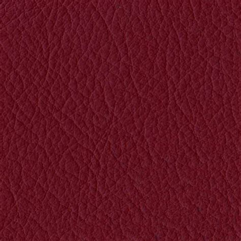 Burgundy Leather by Burgundy Brown Hairs