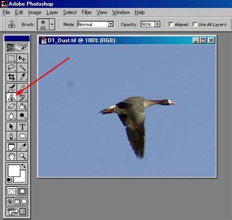 rubber st tool photoshop photoshop question bike chat forums