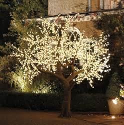 decorative outdoor lighting illuminated decorative led tree by enchanted trees