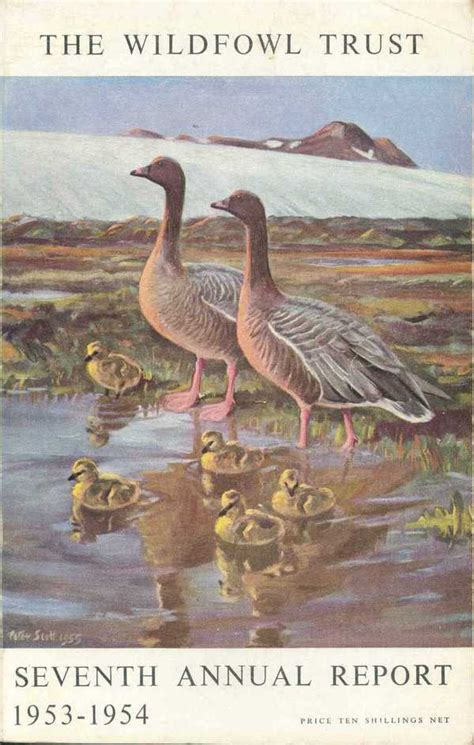 remarks on the seventh annual report of the hon horace mann of the massachusetts board of education classic reprint books the wildfowl trust seventh annual report