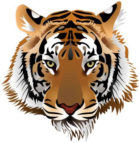 pattern tiger ai tiger vector free download free vector download 314 free