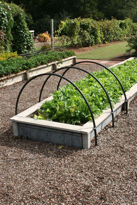 Edible Garden Ideas Ewa In The Garden 24 Beautiful Photos Of Edible Landscape Ideas Picked