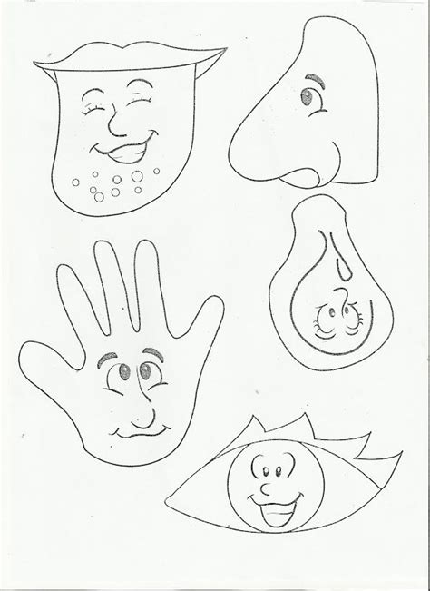 senses coloring pages preschool 1000 images about 5 senses on pinterest worksheets for