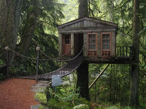 temple of the blue moon treehouse picture of treehouse point issaquah tripadvisor