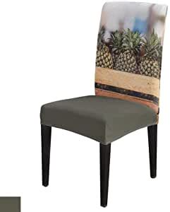 amazoncom tropical style  pack chair covers stretch