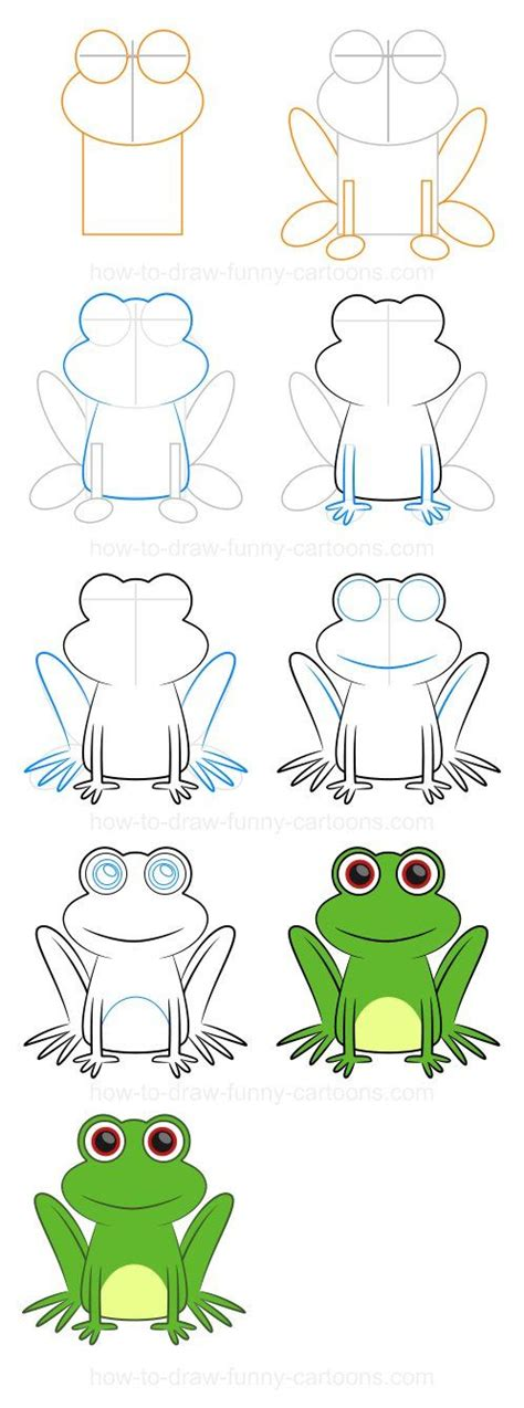 How To Draw A Realistic Frog Step By Step