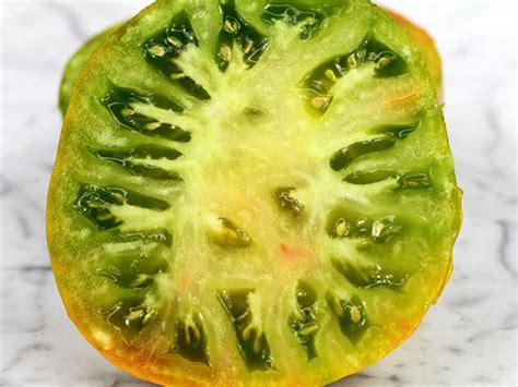 Bibit Tomat Green Emerald 1 emerald apple tomato baker creek heirloom seeds