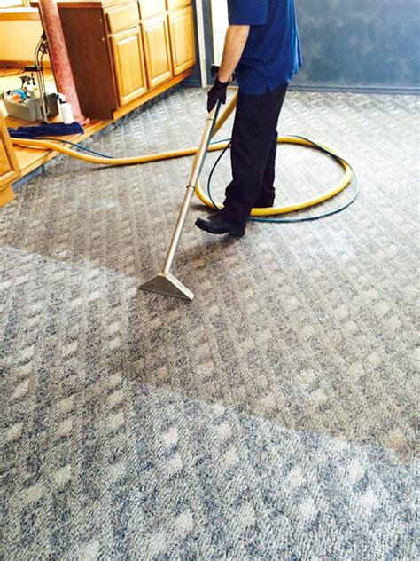 carpet cleaning rug doctor do we rinse carpet and rug cleaning