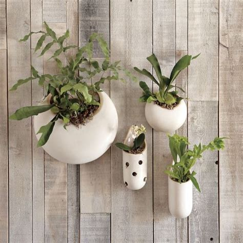 hanging wall planters indoor shane powers ceramic wall planters contemporary indoor pots and planters by west elm