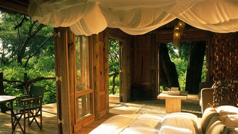 treehouse bedroom tree house bedroom interior design for shoes shop