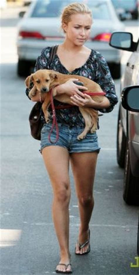 Fashion Find Hayden In Local by 1000 Images About Hayden Panettiere S Closet On