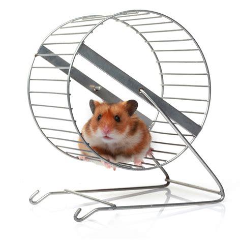 hamster wheel hamster wheel images