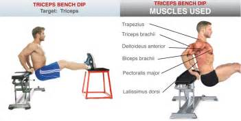 Chair Dip Uncategorized How To Prevent Back Pain