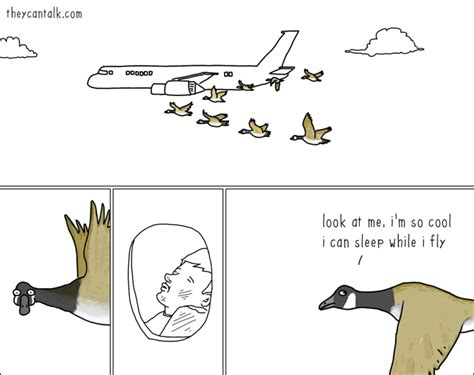they can talk a collection of comics about animals that reveal what animals really think