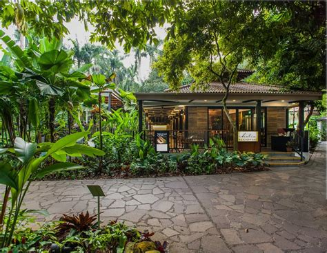 Cafes Near Botanic Gardens 10 Cafes In Singapore That Are To Nature