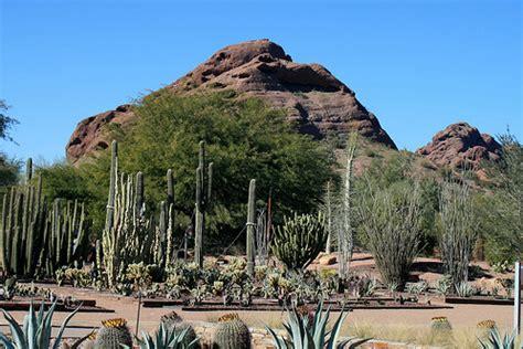 desert botanical garden coupons desert botanical garden promotion code 2017 2018 best