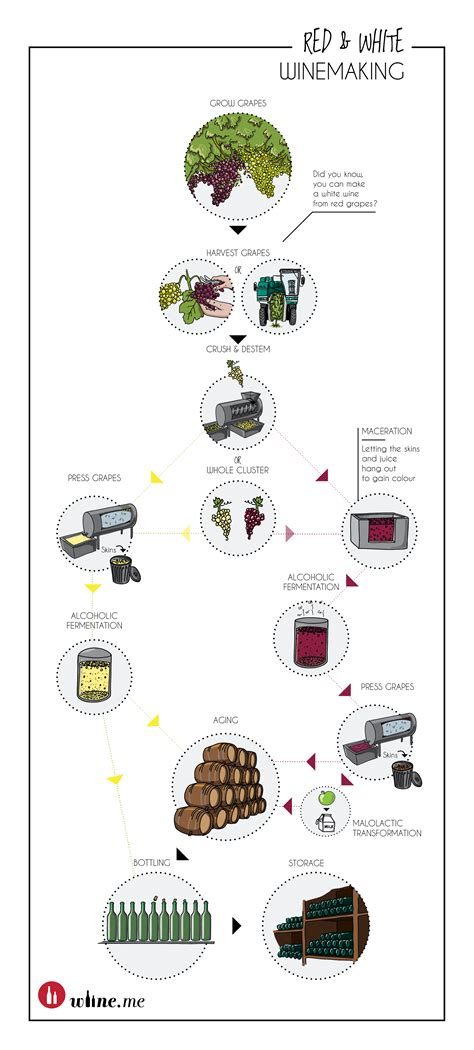 How Is A Made how wine is made winemaking infographics