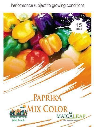 Benih Paprika Ungu benih paprika mix color maica leaf jualbenihmurah