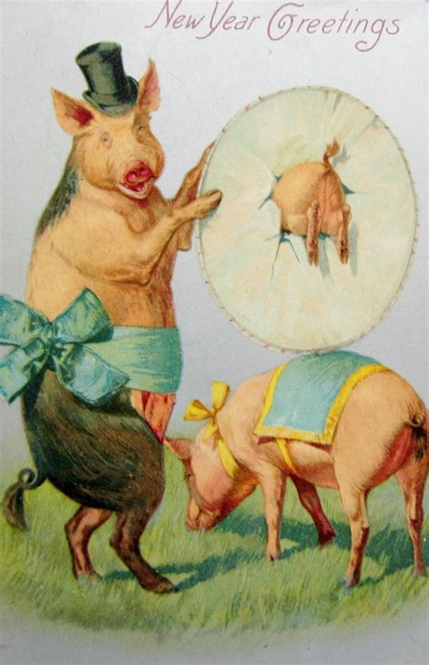 new year for the pig new year pig postcards