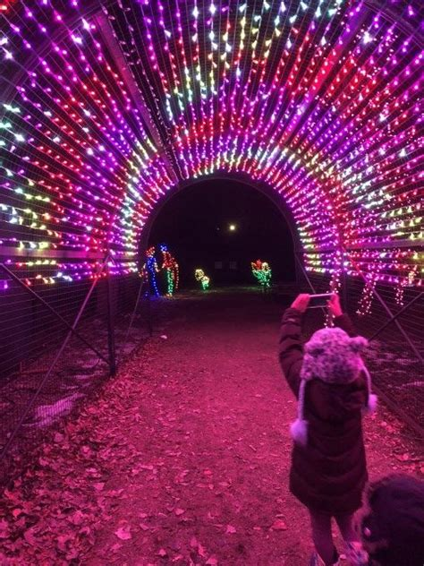 calgary zoo lights find at zoolights mint heritage
