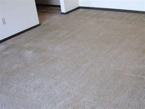 rug cleaning syracuse ny carpet cleaning specials syracuse ny home everydayentropy