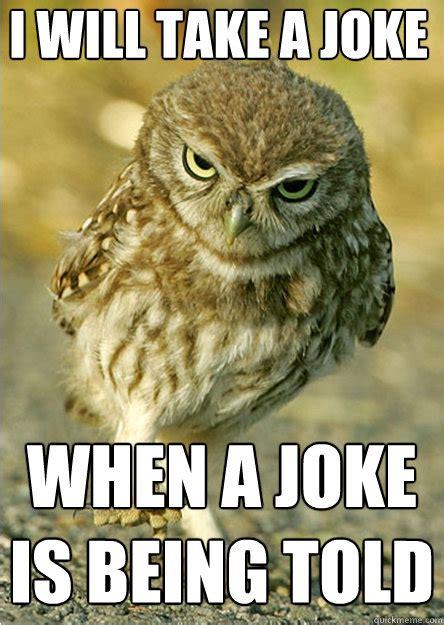 Owl Meme - funny owl puns memes