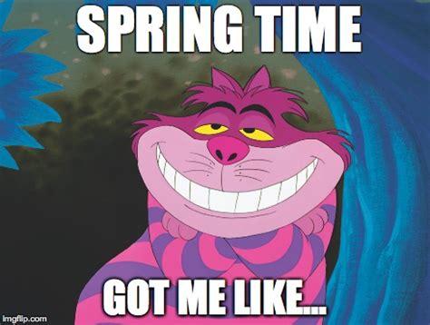 Spring Meme - spring time got me like imgflip