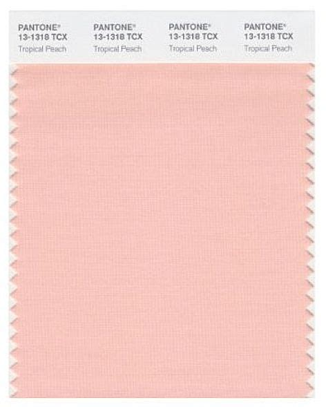 peach pantone pantone tropical peach peach pinterest