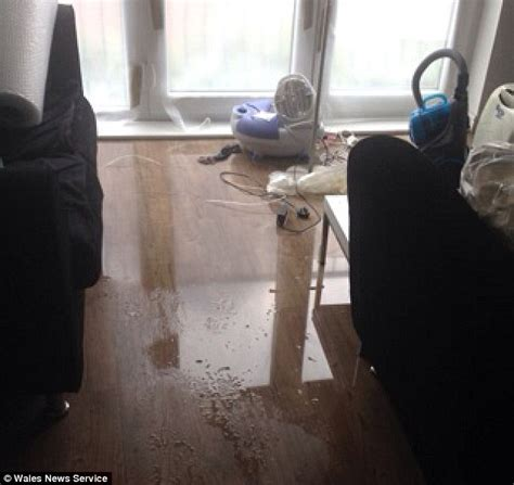 raw sewage smell in bathroom honeymooners returned home to find their house flooded