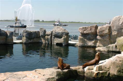 am meer zoo at the sea with the sea aquarium bremerhaven de