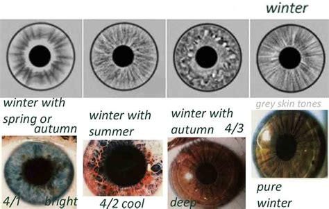 iris pattern types eye types iridology expressing your truth blog